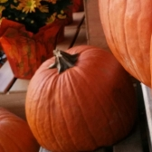 pumpkin, halloween, grief, death, what to say when someone dies, TealAshes.com, Teresa TL Bruce